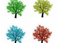 Submodalności - Który kolor najbardziej pasuje?