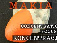 Makia - Energia podąża za uwagą