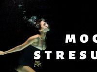 BLOG Stres nie jest stresujący